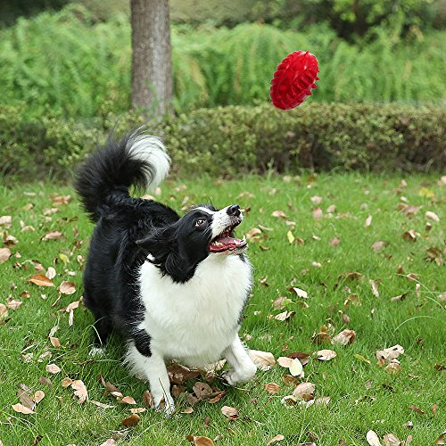 Durable-Rubber-Tough-Dog-Toys-Strong-Indestructible-Red-Pet-Chew-ToyDinosaur-Egg