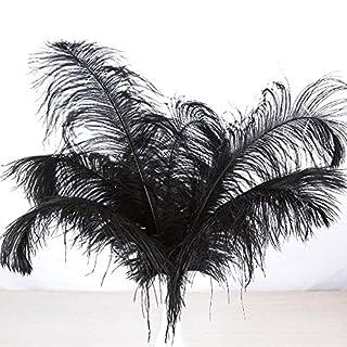 [Aution House—10Pièces Décoratif Creative Libre Plume Naturelle de l'autruche ]--Huston Lowell ((40-45cm) , Noir)