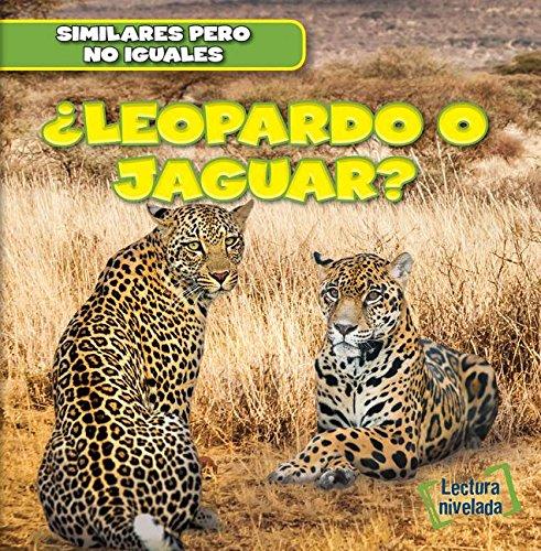 Leopardo o jaguar?/ Leopard or Jaguar? (Similares Pero No Iguales/ Animal Look-alikes) por Rob Ryndak