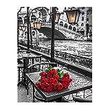 Amazingdeal365 Motiv-Paris Rose 5D DIY Diamond Stickerei Malerei Kreuzstich für Balkon,Terasse,Café,Kinderzimmer,Wohnzimmer, Schlafzimmer, Arbeitszimmer usw.