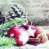 20 Servietten Äpfel, Zweige & Zapfen/Winter / Weihnachten 33x33cm