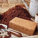Komprimiert Kokosfaser Block x 1 - Kompost - Seedlings - Schnecke Bettwäsche - Schnecken - Wormcity Markiert
