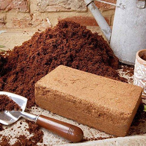 wormcity-mattone-compresso-in-fibra-di-cocco-per-compost-piantine-vermi-e-lumache