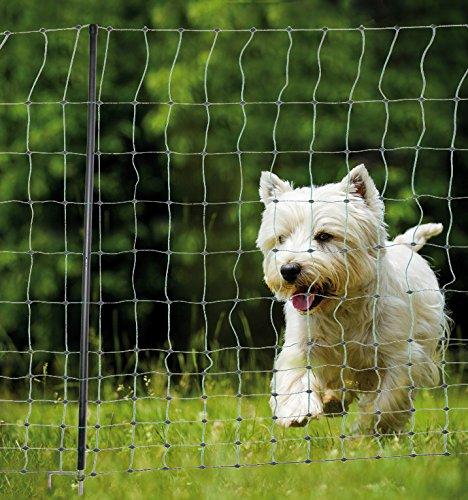 *Hundezaun Katzenzaun Hühnerzaun 50m lang , 112cm hoch , kleine Maschen für Hunde und Katzen! Farbe Grün +15 Pfähle Hütezaun Hütenetz Hunde/Katzen-Zaun Einzäunung*