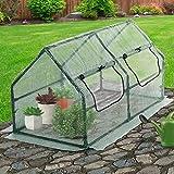 Jago Folien-Gewächshaus für die Mini Bio-Produktion und den Blumenanbau | Gewächshaus, Wintergarten, Treibhaus, Tomatenhaus, Pflanzenhaus