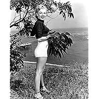 Photo Monroe Marilyn 089 A4 10x8 Poster Print