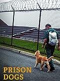 Prison Dogs [OV]