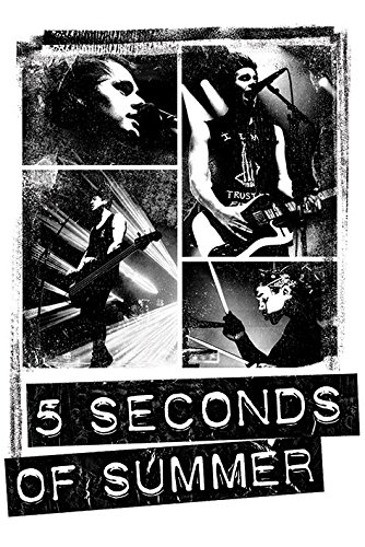 5-seconds-of-summer-photo-block-maxi-poster-wood-multi-colour