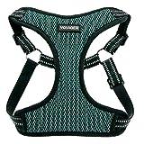 Best Pet Supplies, Inc. Voyager- voll Einstieg Mesh-Harness mit reflektierendem 3M Piping Klein Türkis Basis