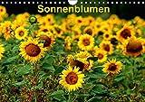 Sonnenblumen (Wandkalender 2018 DIN A4 quer): Sonnenblumen in verschiedenen Farben und Formen, wie gewachsen im Feld (Monatskalender, 14 Seiten ) ... [Kalender] [Apr 01, 2017] Schulz, Dorothea