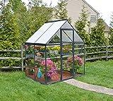 Palram Aluminium Gewächshaus Gartenhaus Hybrid 6x4 // 130x185x209 cm (LxBxH); Treibhaus & Tomatenhaus zur Aufzucht
