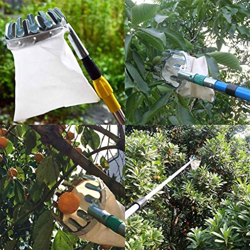 Overmal Outdoor Obstpflücker Apfel Orange Pfirsich Birne Praktische Gartenpflückwerkzeugtasche, Werkzeugkopf, Gratis Fruchttragetasche Teleskopstangen Erntehelfer Obsternte Obstgreifer