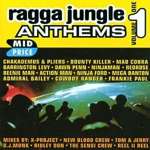 Ragga Jungle Anthems Vol. 1