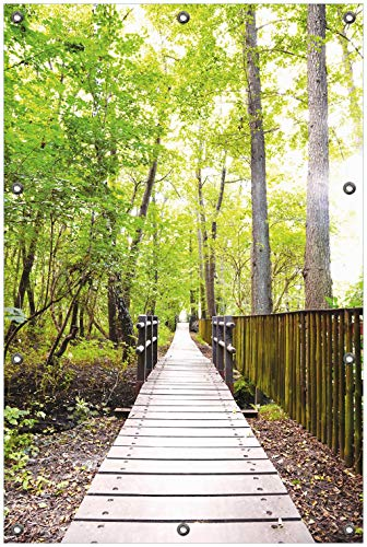 Wallario Garten-Poster Outdoor-Poster, Spaziergang im Wald Holzweg über einen Fluss in Premiumqualität, für den Außeneinsatz geeignet