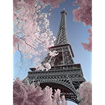 Amazon Fr Toile Tour Eiffel