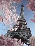 David Clapp (Eiffel Tower Infrared, Paris 60 x 80 cm Toile Imprimée