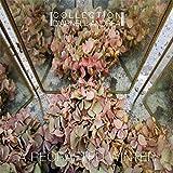 Anklicken zum Vergrößeren: Collection d'Arnell Andrea - A Recrafted Winter (Audio CD)