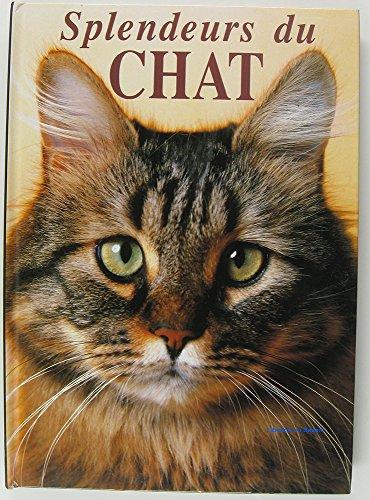 Splendeurs du chat