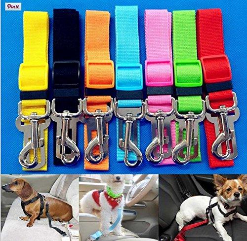 TOOGOO - Cinturón Seguridad Coche Para Perros / Cinturón