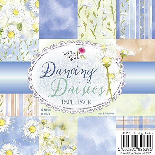 Wild Rose Studio Dancing Daisies, Papier, Gemustert, Mehrfarbig, 0,5x 15,5x 15,5cm (Rose Dancing)
