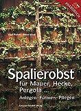 Spalierobst für Mauer, Hecke, Pergola...: Anlegen, Formen, Pflegen