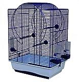 Duvo+ Cage à Oiseau Blanc/Noir avec Accessoire pour Oiseau