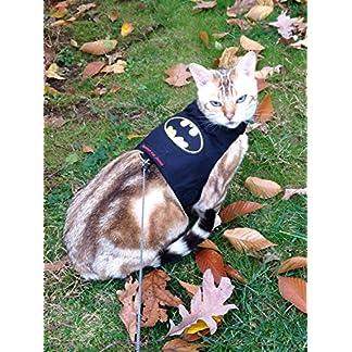mynwood cat jacket/harness batman kitten up to 8month - escape proof Mynwood Cat Jacket/Harness Batman Kitten up to 8month – Escape Proof 61UBSCCdX8L