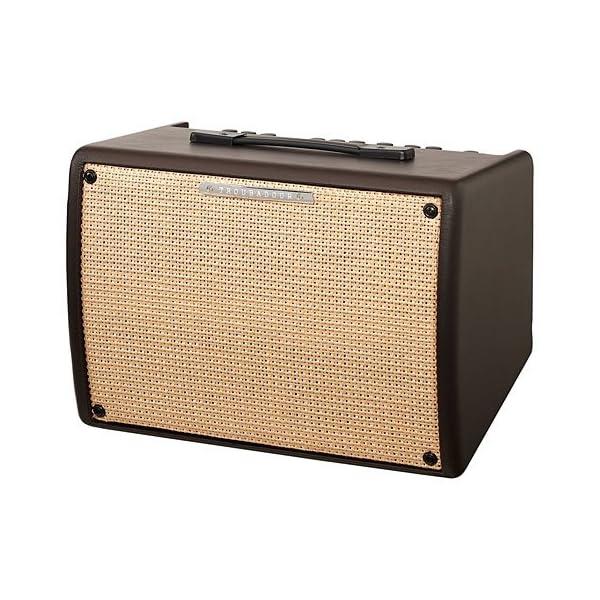 IBANEZ T30II - combo per chitarra acustica - 30W - 1x8