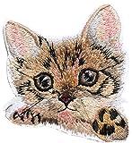 chat chaton ecusson patche insigne 7x7cm thermocollant brodé mimi mignon