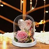 shirylzee Rosa Eterna 100 Lingue Ti Amo Lampada Rosa Fiori Artificiali Cupola di Vetro con Luce a LED e Biglietto dauguri, Fe