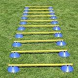 Bild: MiniHürden 10er Set mit blauen Markiermulden für Agility  Hundetraining gelb