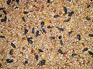 Dawn Chorus Original Flavour Wild Bird Seed Mix (25 kg) from Twootz