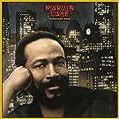 Midnight Love [Vinyl LP]