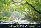 Magische Wälder - Kalender 2016 - Korsch-Verlag - Panorama-Format - 58 x 39 cm