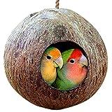 Noce di cocco naturale casetta-nido casetta per gabbia o all' esterno-Finch, parrocchetto, passeri 'eco-friendly feeder-Struttura naturale incoraggia piede e becco esercizio-include passante