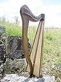 Harfe mit 27 Saiten und Halbtonklappen