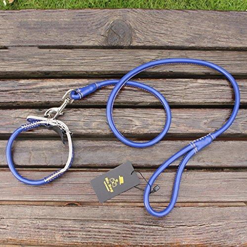 CKH Mittlere kleine Hundehalsband Hund Kette Golden Retriever Samojeden Hündchen Leine Cord Hunde Heimtierbedarf