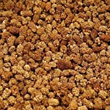 1kg Maulbeeren weiß getrocknet, leckere Trockenfrüchte ungeschwefelt und ungezuckert
