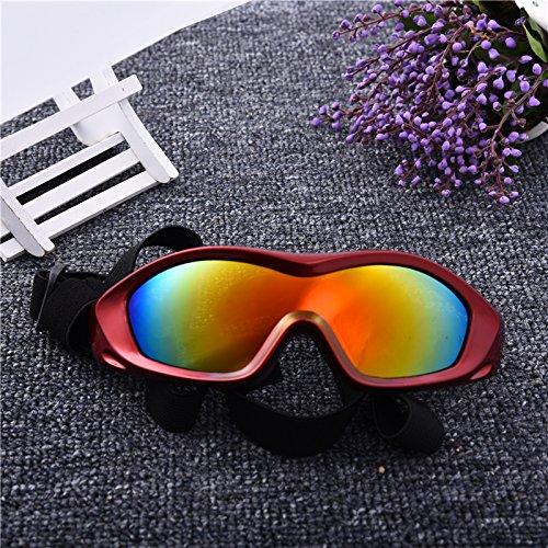 Aprigy - Big Dog Sonnenbrille Haustier-Gl?Ser Anti-UV-Gl?Ser f¨¹r Big Dog in der Nacht Tragen und Tags¨¹ber Ausgehen [Rot ]