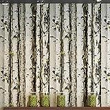 ZHAORLL Retro Umweltschutz PVC-Tapete Holzmaserung Baumstamm weiße Birke Baum Café Restaurant Tapete Nicht selbstklebend 53CM * 9.5M,20m2