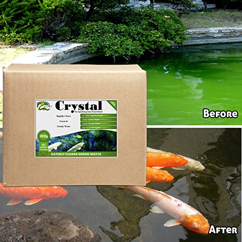 green-water-remover-20-kilo-hydra-crystal-pond-anti-green-treatment-crystal-clear-water