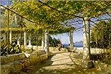 Poster 90 x 60 cm: Pergola auf Capri mit Blick auf den