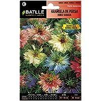 Semillas de Flores - Arañuela de Persia doble variada - Batlle
