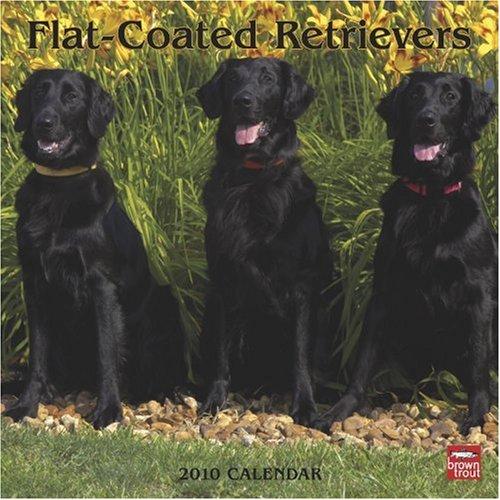 Flat-Coated Retrievers 2010 -