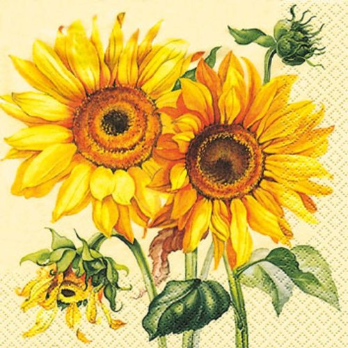 pack-of-4-napkins-sunflower-33-x-33cm-great-for-decoupage-decopatch-16-610-34