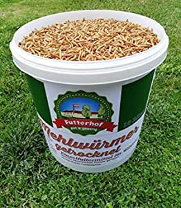 Omenluck 1 St/ück Maiswerkzeug Abisolierer Entferner Rasierer Maisschneider K/üchenzubeh/ör Kochwerkzeug