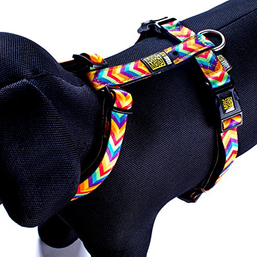 Produkt: Max & Molly Harness Hundegeschirr
