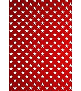 Ebby Premium Printed Mobile Back Case Cover With Full protection For LG Pro Lite (Designer Case)
