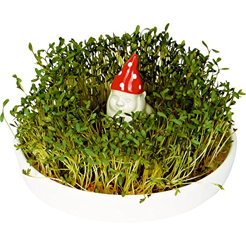 Spiegelburg-14850-Garden-Kids-Seed-Pot-Pottery-with-Gnome-and-Cress-Seeds–145-cm