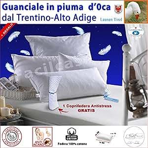 Guanciale Cuscino Piuma d' Oca 50+50 LAUNEN TIROL +gratis 1Coprifedera 50x80 h18